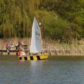 Wassersport&Hafenleben/Optimist